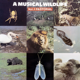 A MUSICAL WILDLIFE Vol. 1 Pastoral